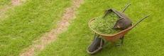 Proyectos de jardinería en Cangas