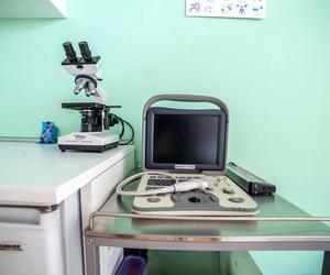 Clínica veterinaria en El Ejido