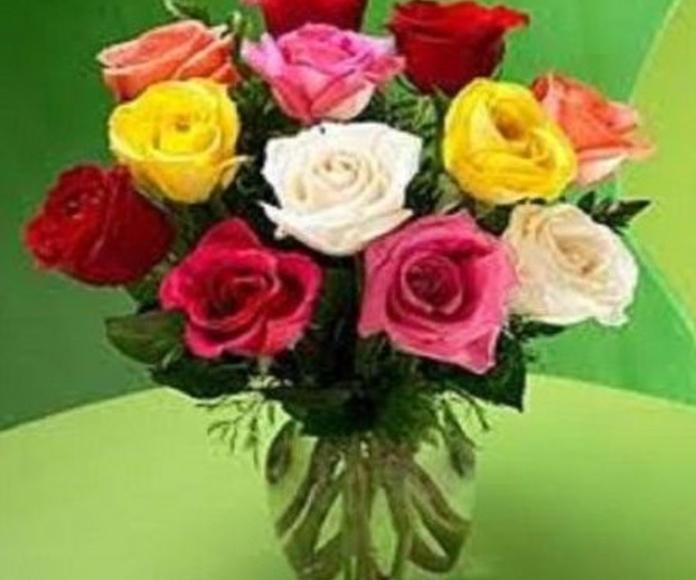 Rosas variadas: Productos de Floristería Pothos