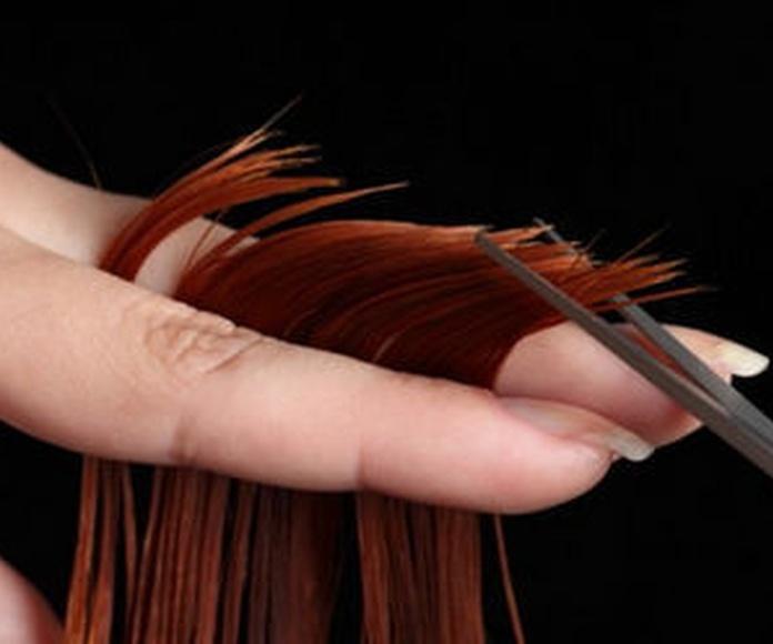 Cortes de pelo : Servicios de Metta Peluqueros