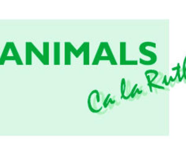 Peluquería canina en Caldes de Montbui | Animals Ca la Ruth