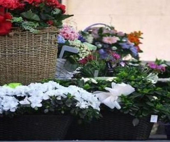centros y flores naturales