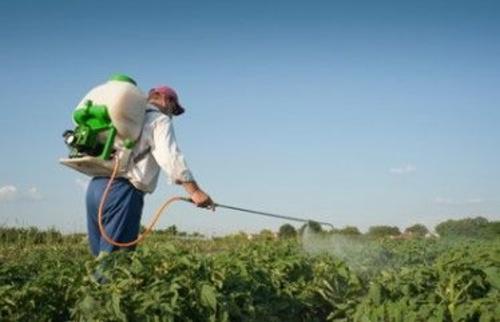 Semillas en Añover de Tajo | Agroceres, S.L.