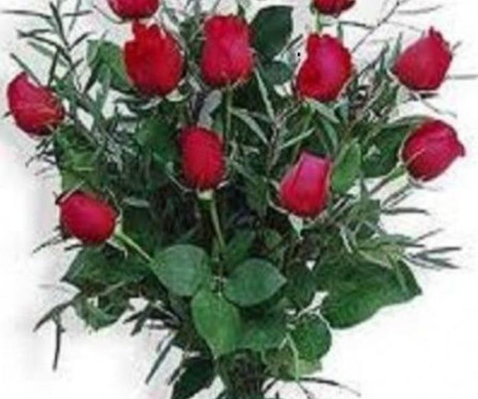 Rosa rojas: Productos de Floristería Pothos