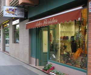 Galería de Floristerías en León | Aster