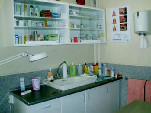 Veterinarios en Faura | Clínica Veterinaria Les Valls