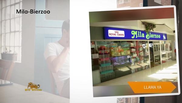 Venta de animales en Siero en la tienda Mila Bierzoo, mascotas y todo en complementos