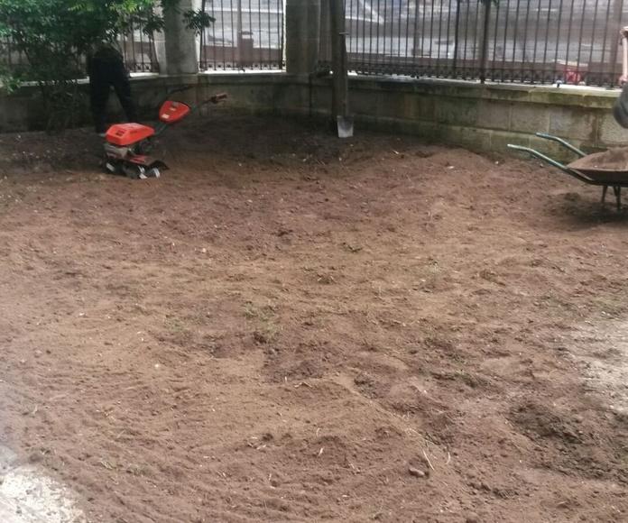 Recuperación de jardines