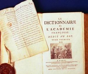 Diccionario de la Lengua Francesa.
