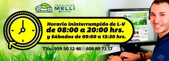 Horario de Atención Telefónica Desguace|default:seo.title }}