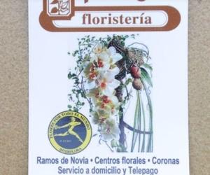 Galería de Floristerías en Logroño | Floristería Pothos