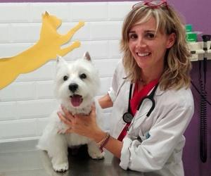 clinica veterinaria Parque Bruil | Clínica veterinaria en Zaragoza