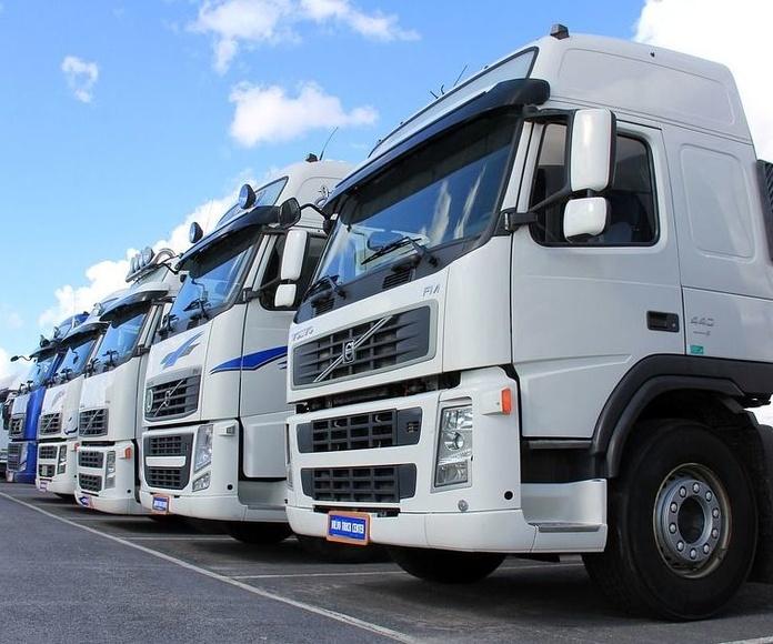 Trámites Transportes: Servicios de Pérez Couñago Gestoría Administrativa