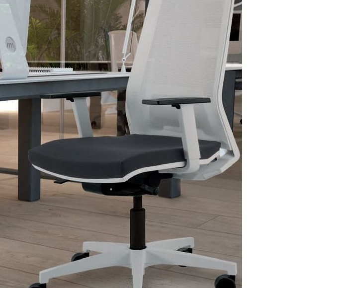 Silla ergonómica elevable y regulación lumbar, respaldo malla blanca.NOVEDAD