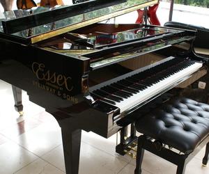 Instrumentos de música en Oviedo | Galería Musical Arévalo