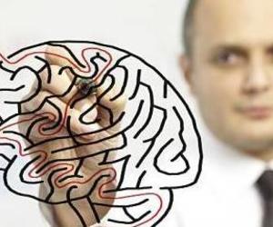 Neuropsicología Adultos