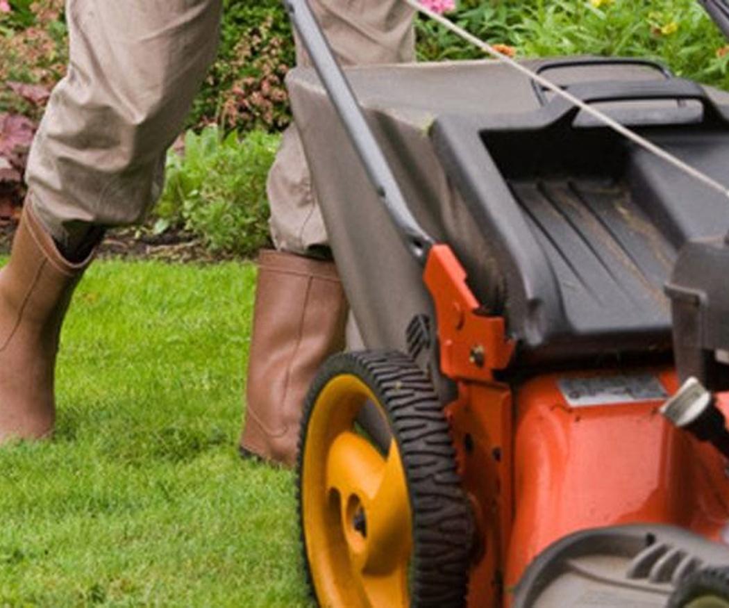 Consejos para el mantenimiento de jardines