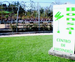 Ofertas y precios de instalación de césped artificial en Madrid | Viveros Bonsai
