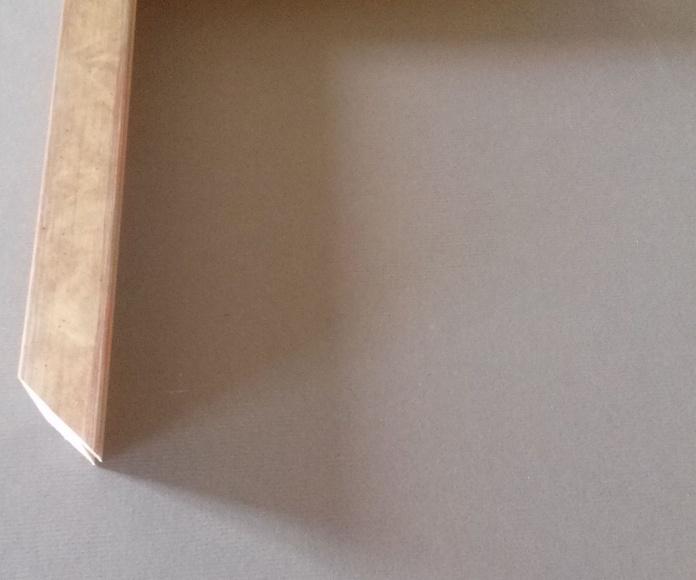 REF 536-013: Muestrario de Moldusevilla
