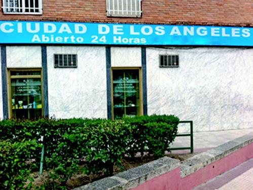 Veterinario a domicilio en Madrid centro