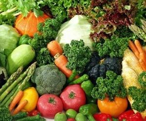 Terapia nutricional a domicilio en Vigo