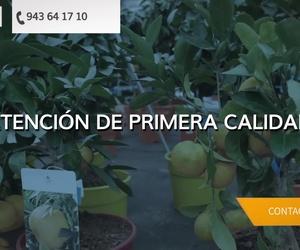 Flores naturales en Guipúzcoa | Endanea Garden Center
