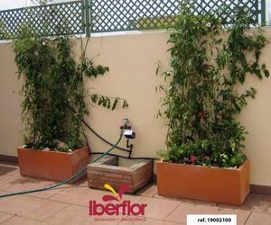 Galería de Bodas en Sevilla | Iberflor Decoración y Diseño Floral