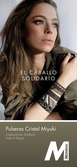 EL CABALLO SOLIDARIO|default:seo.title }}