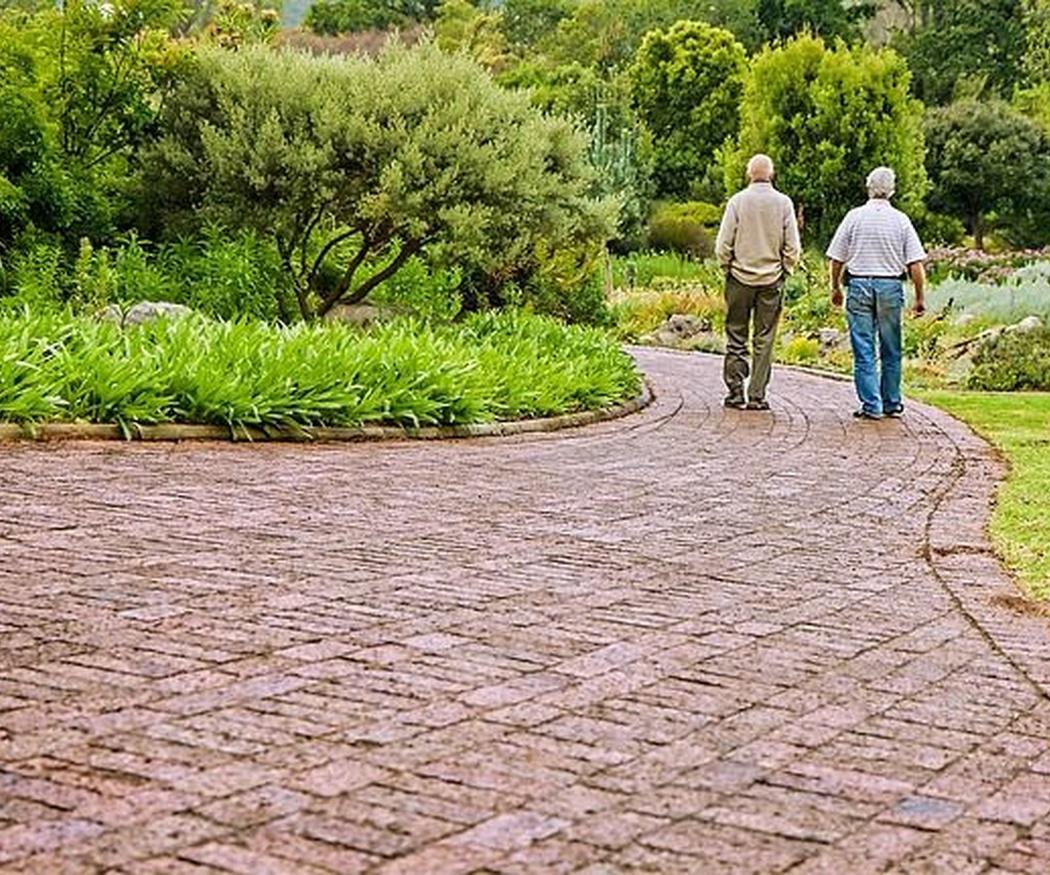 Beneficios de salir de excursión con nuestros mayores