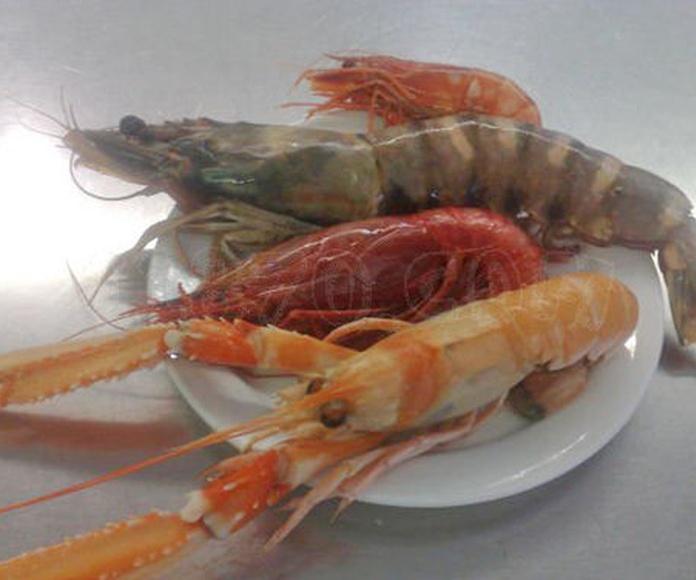 Nuestras especialidades: Catálogo de Marisquería La Chacha