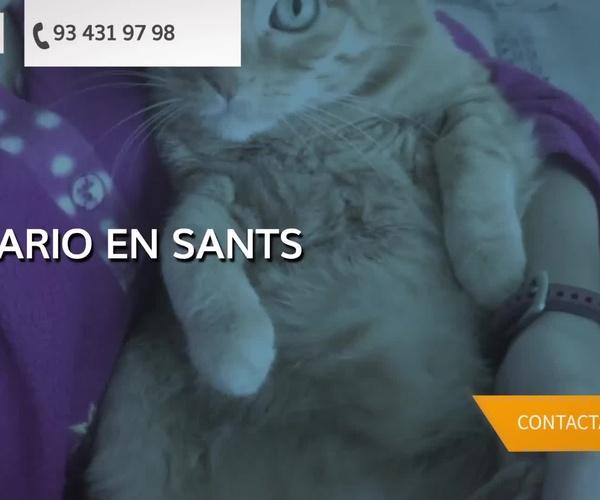 Clínica veterinaria en Sants Montjuic en Barcelona
