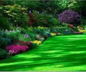 Empresas de jardinería Toledo
