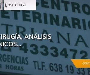Clínica veterinaria en Sevilla - C. Veterinario Triana