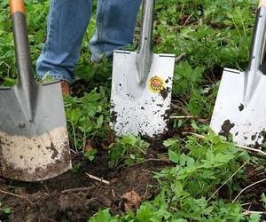 Limpiezas Cristina Mateo, servicio de limpieza de jardines en Madrid