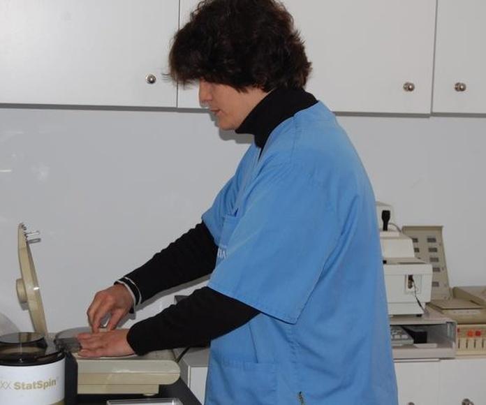 ANÁLISIS: SERVICIOS  de C. Veterinario Triana