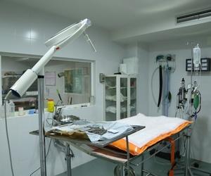 Clínica veterinaria en Humanes de Madrid | Clínica Veterinaria San Antón