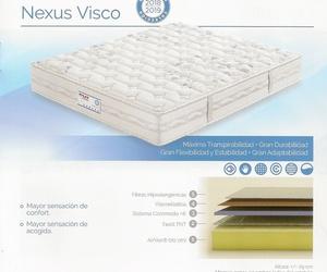 Nexus Visco 2018