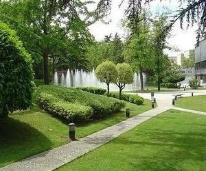 Diseño de jardines para empresas