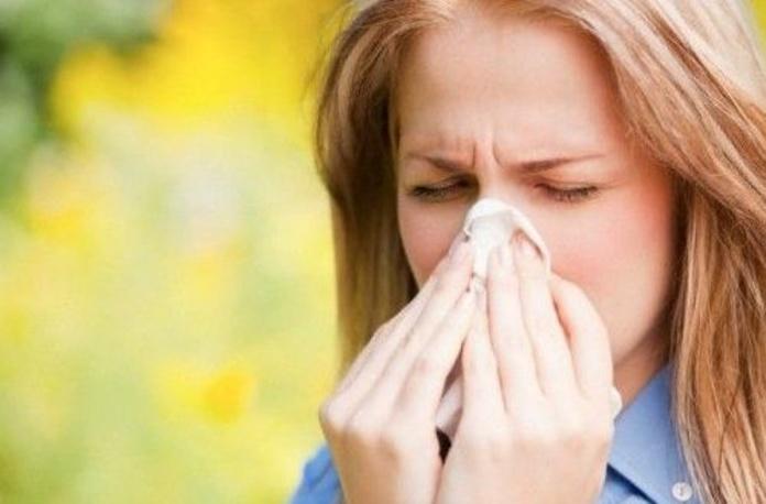 Alergia primaveral |default:seo.title }}