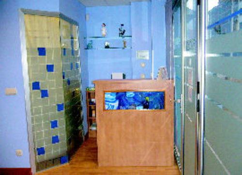 Dentistas, Clínicas dentales en Villabona | Dra. Carolina Morillas