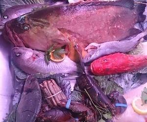 En La Barraca sol, playa, rico pescado y mariscos