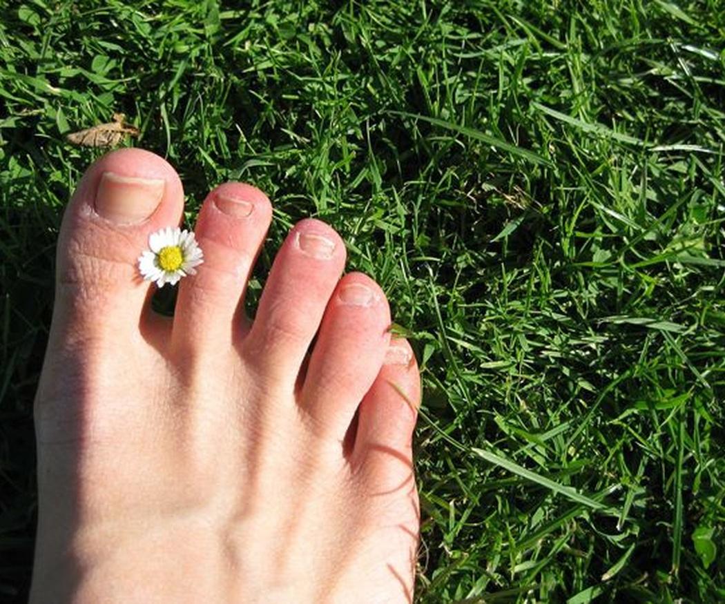 El ser humano y sus pies