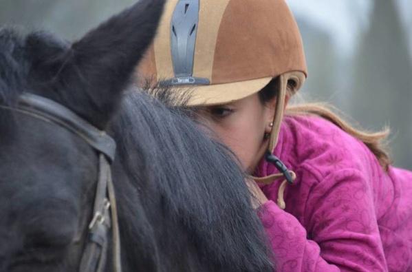 Equitacion: el deporte mas completo