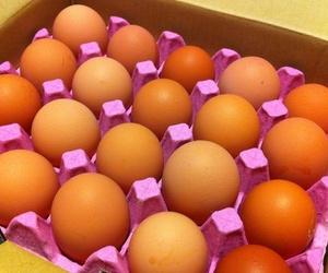 La importancia del embalaje en alimentación