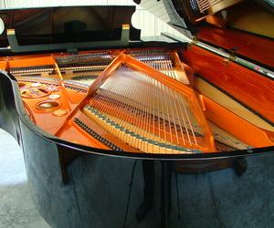 Instrumentos de música en Aya | La Galería del Piano