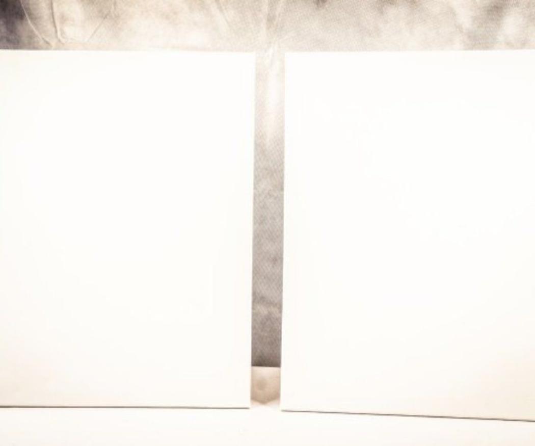 Tipos de lienzos para pintura