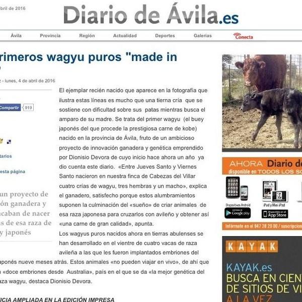 Carne Wagyu de Ávila