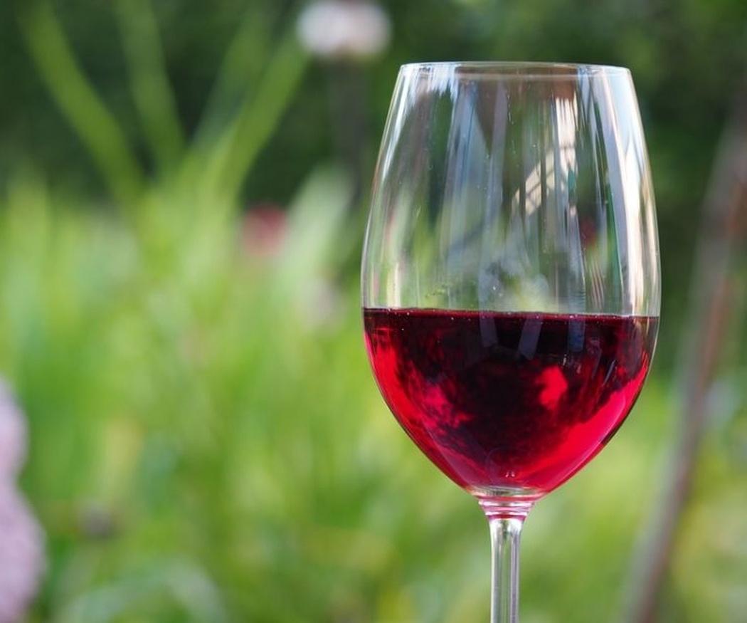 Un buen jamón se merecen un buen vino