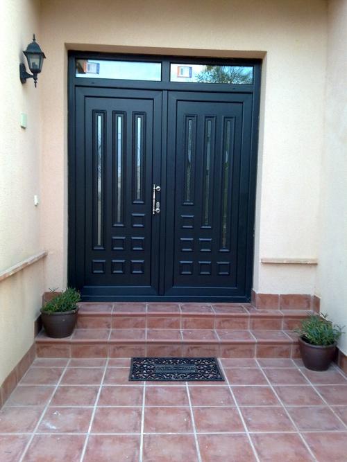 Puerta principal de dos hojas, (modelo ip10, color roble pantanoso)