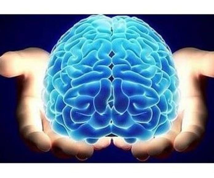 Fisioterapia neurológica: Tratamientos de Fisioterapia Paradise Center